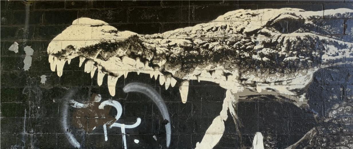 Crocodile Glesga Mural