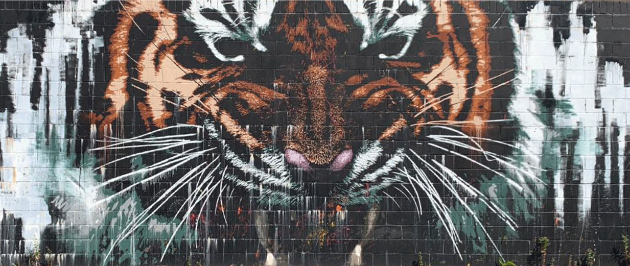 Glasgow's Tiger Mural